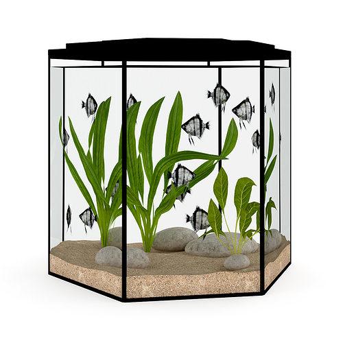 hexagonal aquarium 3d model max obj mtl fbx c4d 1