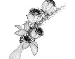 Roses in Flask 3D