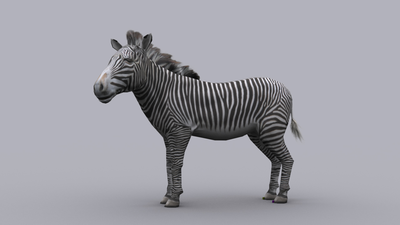 Uncategorized Zebra Game 3d asset zebra game ready animated model cgtrader low poly max 1