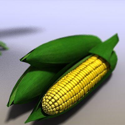 corn field 3d model max obj mtl 3ds c4d lwo lw lws ma mb 1