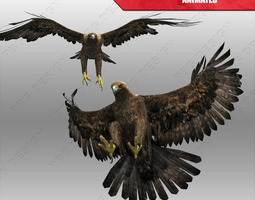 Golden Eagle Animated 3D Model