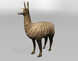 3D model Llama