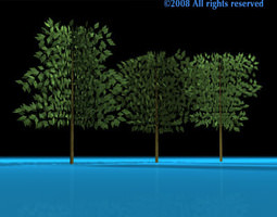 Tree 3d Models Download 3d Tree Files Cgtrader Com