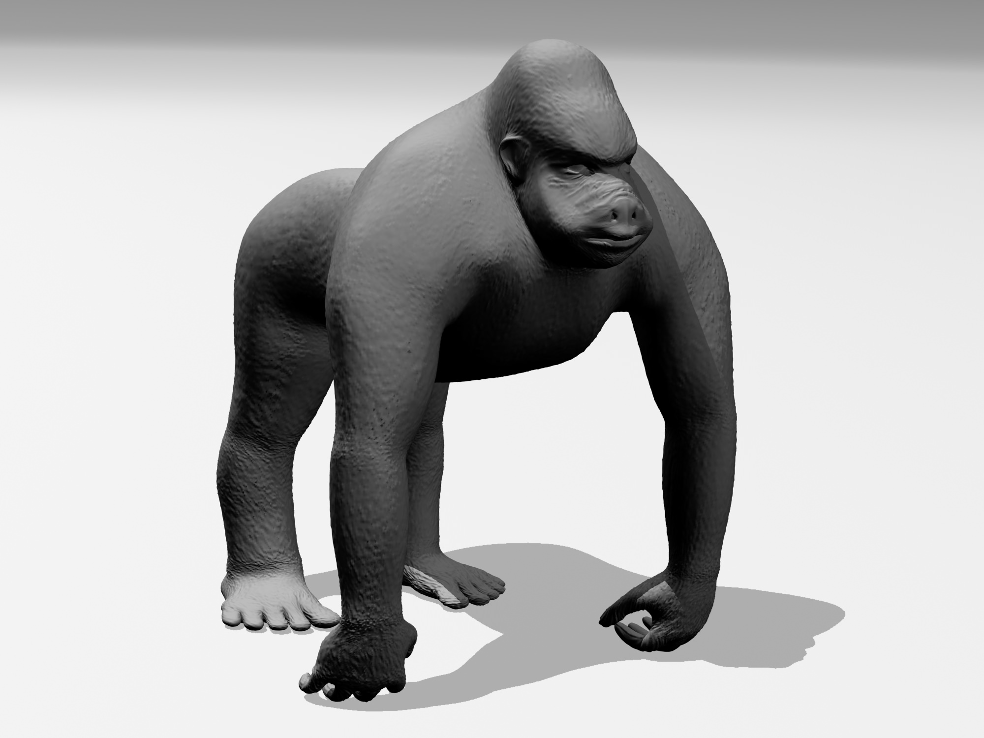 3d sex gorillas fucked photo