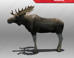 3D model Moose Animated