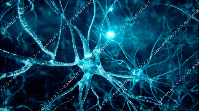 neurons-fly-through 3d model animated max obj pdf 1