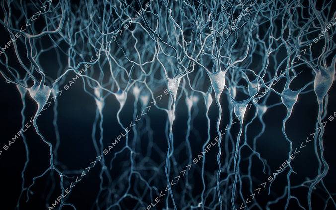 pyramidal-neurons set 3d model max obj mtl 1