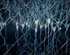3D model Pyramidal-Neurons set