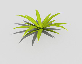 Low poly Plant spruce 3D model low-poly
