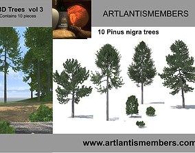 3D model tree vol3