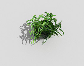 3D asset low-poly palm Plant