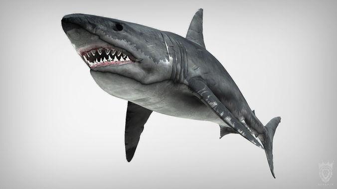 big white shark megalodon 3d model max obj mtl tga 1