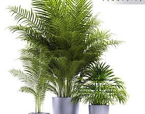 3D model Plants 72