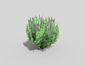 tropical bush 3D model VR / AR ready