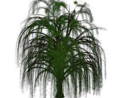 willow tree 3d model obj 3ds mtl