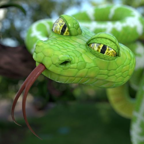 cartoon snake 3d model obj mtl fbx blend tga 1