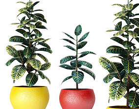 3D model modern Plants collection