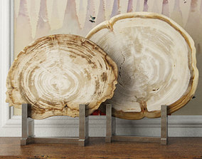 3D White Petrified Wood Slices