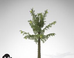 xfrogplants alethopteris 3d model max 3ds c4d lwo lw lws ma mb mtl