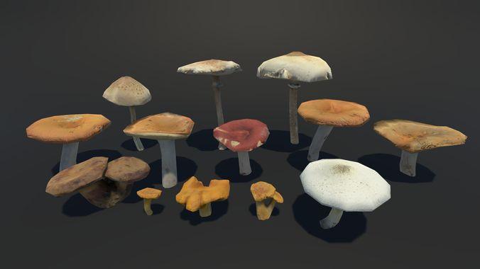 forest mushrooms vol 2 3d model low-poly fbx 1
