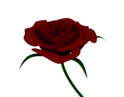 Red Rose 3D