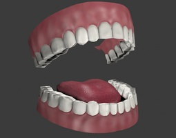 Mouth 3D asset