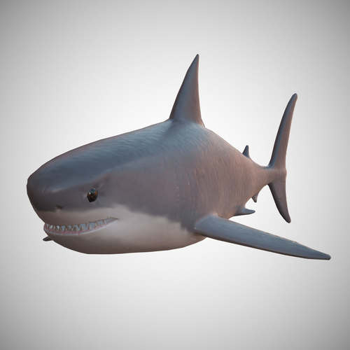 great white shark 3d model low-poly max obj mtl fbx ma mb blend tga 1