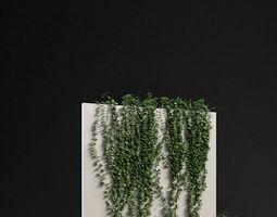 Ivy 01 3D