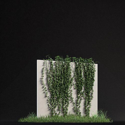 Ivy 01 3d Cgtrader