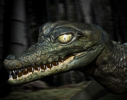 birth of a crocodile 3d model obj ma mb