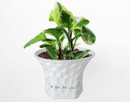 003d - Planter - Morph - Rock Pattern -