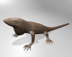 Anole lizard 3D print model