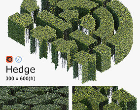 3D model Hedge 300x600
