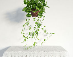 3D model plant 35 am141