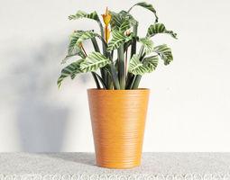 plant 07 am141 3d model