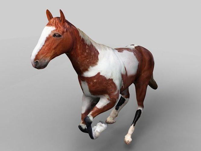 horse 3d mode 3d model max fbx ma mb 1
