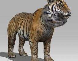 tiger 3d model animated