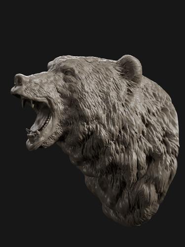 Bear Head Grin