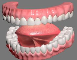 3D Textured mouth model
