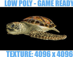 3D asset low-poly LOW POLY Sea Turtle