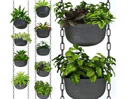 3D model Hanging plants 001