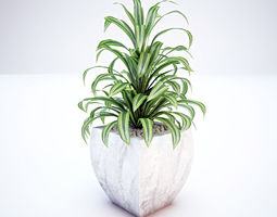 Plant and Vase 3D