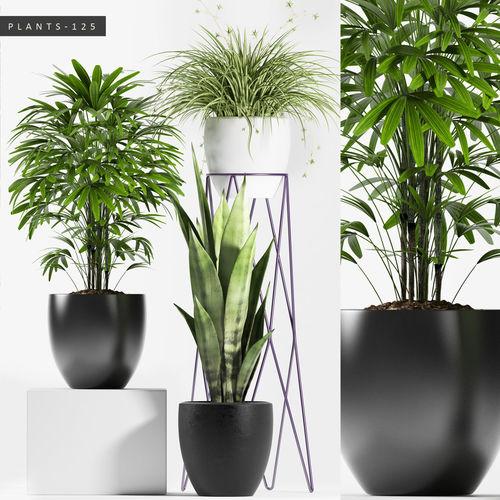 plants set 125 3d model max fbx unitypackage 1
