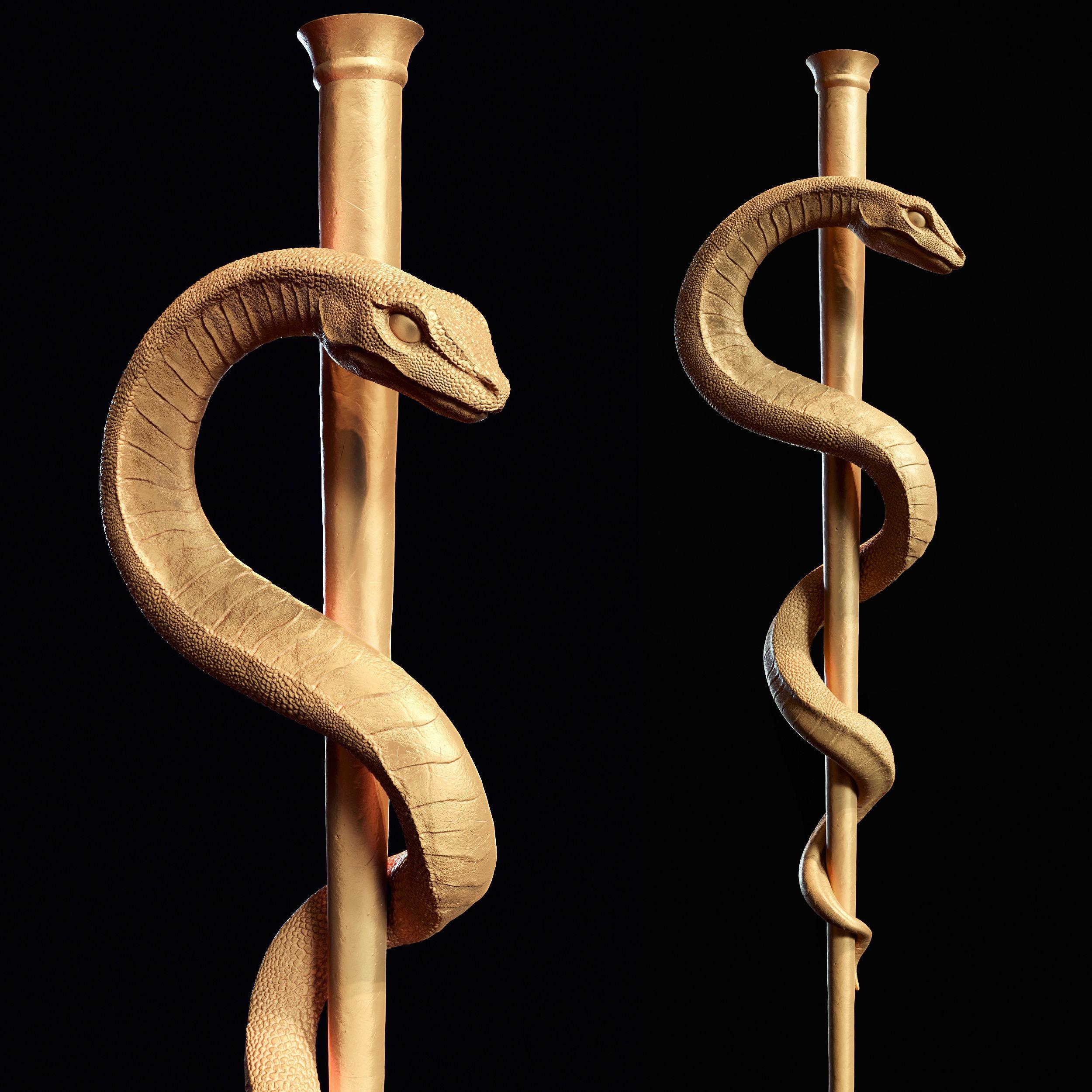 Medical symbol Asclepius 3d print model
