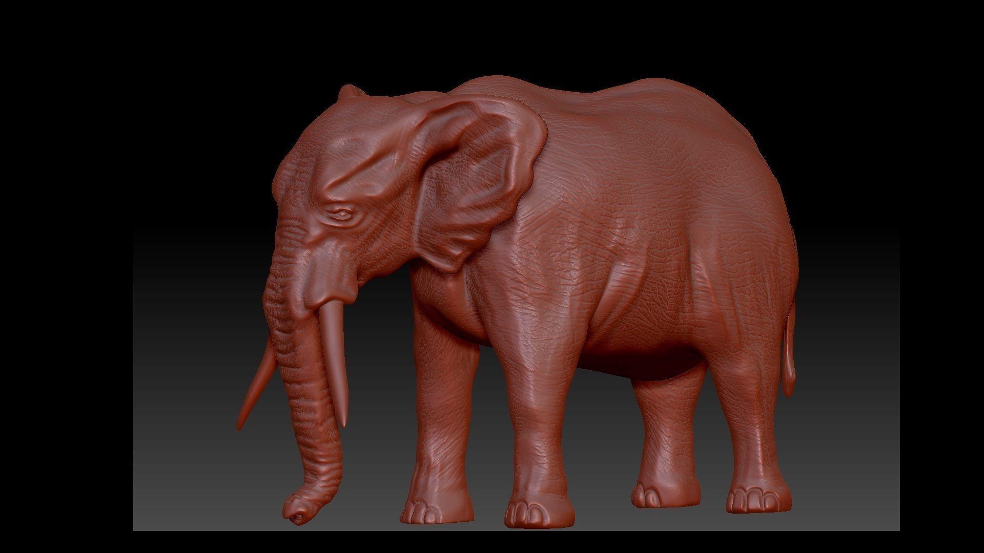 Elephant 3D Model for print