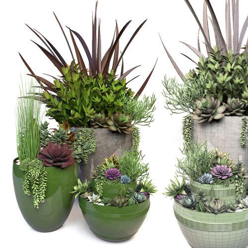 plants 3 3d model max obj fbx mtl 1