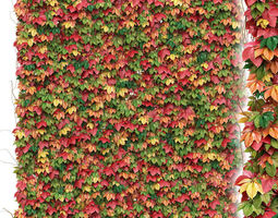 Decorative wall of autumn leaves of grapes 3D asset