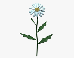 Chamomile lowpoly 3D asset