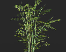 3D model Game Ready Bamboo Tree 01