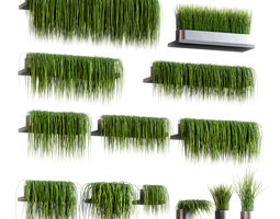 Set of 13 grass patterns on potted shelves 3D